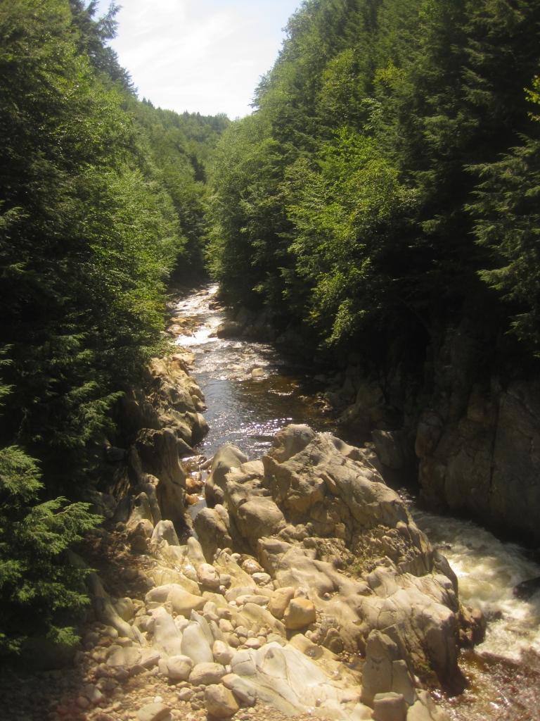 Vermont gorge.