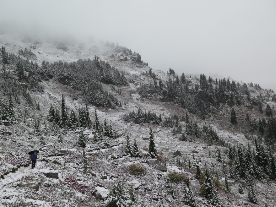 Veggie ventures into Labor Day snowfall.